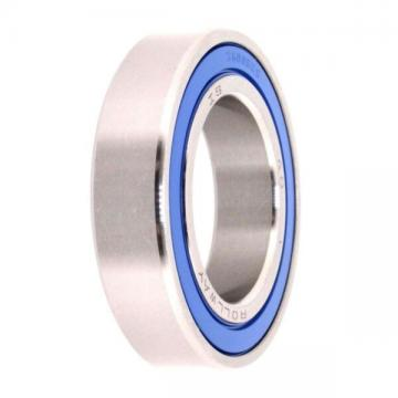 S6008 2rs Rollway Stainless Steel Ball Bearings